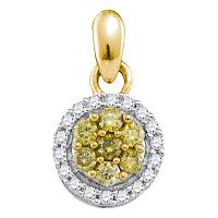 10kt Yellow Gold Womens Round Yellow Color Enhanced Diamond Circle Frame Cluster Pendant 1/4 Cttw