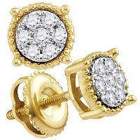 10kt Yellow Gold Womens Round Diamond Flower Cluster Stud Earrings 1/6 Cttw