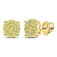 10kt Yellow Gold Womens Round Canary Diamond Concentric Cluster Stud Earrings 1/4 Cttw