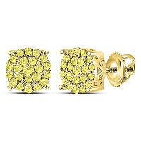 10kt Yellow Gold Womens Round Canary Diamond Concentric Cluster Stud Earrings 1/2 Cttw