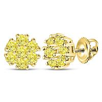 10kt Yellow Gold Womens Round Color Enhanced Diamond Cluster Earrings 1/4 Cttw