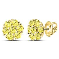10kt Yellow Gold Womens Round Color Enhanced Diamond Cluster Earrings 1.00 Cttw