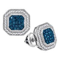 10kt White Gold Womens Round Blue Color Enhanced Diamond Octagon Frame Cluster Earrings 1/2 Cttw